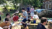 Miscanthus Gras Projekt