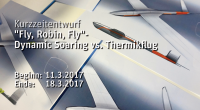 "Kurzzeitprojekt  ""Fly, Robin, Fly""- Dynamic Soaring vs. Thermikflug"
